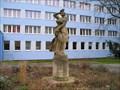 Image for Venuše s jablkem, Praha-Suchdol, CZ