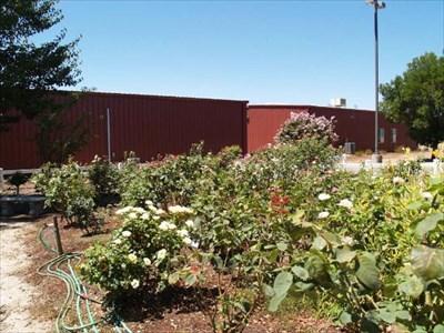 Wilton Memorial Rose Garden Rose Gardens On