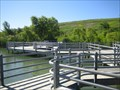 Image for Coastal Boardwalk - Glenridge Quarry Naturalization Site