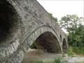 Image for Cenarth Bridge - Satellite Oddity -  Ceridigion, Wales