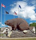 Image for Beaver - Beaverlodge, Alberta