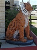 Image for Tiger - Rockport, TX