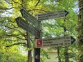 Image for Arrows at Apollinaris-Schleife 1 - Remagen, RP, Germany