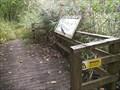 Image for Okel Tor Nature Reserve, Calstock, Cornwall, UK