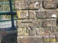 Image for Cut bench mark Horsebridge, Hailsham, East Sussex
