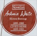 Image for Antonia White - Perham Road, London, UK