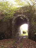 Image for Arched Railway Bridge, near Burntown, Mary Tavy, Devon UK