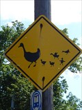 Image for Goose with Goslings Crossing Sign - Hartford, CT