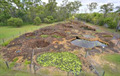 Image for Mystery Craters -South Kolan, Qld, Australia