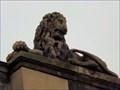 Image for York Crown Court Lion - Eye of York, York, UK
