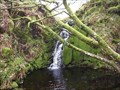 Image for Shavercombe Falls, South Dartmoor