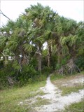 Image for Dyer Park -West Palm Beach, FL