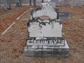 Image for Thomas W. Prunty - Deep Creek Cemetery - Wise County, TX