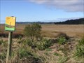 Image for Nukuhou Salt Marsh, Habitat of Endangered Birds - Wainui, Bay of Plenty, New Zealand