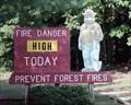 Image for Amicalola Falls State Park, GA