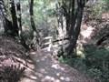 Image for Creekside Trail Bridge - Cupertino, CA
