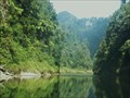 Image for Whanganui National Park - New Zealand