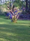 Image for Bottle Tree - Girard, PA
