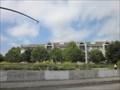 Image for Creek Cam - Palo Alto, CA