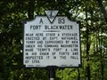 Image for Fort Blackwater
