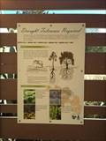 Image for Native Plants Enclosure - Modjeska, CA