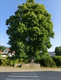 Image for Tree of the republic - Svratka, Czech Republic