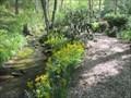 Image for Willow Creek Park - Hendersonville, North Carolina