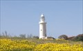 Image for Paphos Lighthouse, Paphos Archaeological Park, Nea Pathos, Cyprus