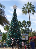 Image for Christmas - SeaWorld - Florida. USA.