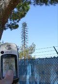 Image for City Park Cell Tower - Lancaster, CA