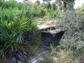 Image for Camp Murphy  Deep Grooved Foundation - Jonathan Dickinson State Park,FL