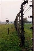 Image for Birkenau (Auschwitz II)
