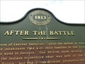 Image for After the Battle - Monroe, Michigan, USA.