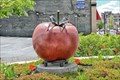Image for Tilting Tomato - Pittston PA