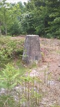 Image for North Common Trig pillar - Chailey, East Sussex
