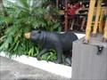 Image for The Zoo Bears  - Puerta Vallarta, Jalisco, Mexico