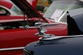 Image for Knights of Columbus Immaculate Heart of Mary Car Show- New Melle, Missouri