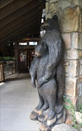 Image for NOC Black Bears ~ Gatlinburg, Tennessee