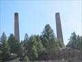 Image for The Bi-Metallic Mill