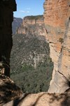 """This view, under early morning light spectacularly adorns """"Blue Mountains World Heritage""""."""