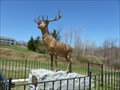 Image for The Elk On The Trail - World War I Memorial - Florida, MA