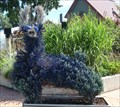 Image for Blue Creature - Logan, Utah