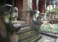 Image for The Lions of 900 block of Beech Avenue, Pittsburgh, Pennsylvania