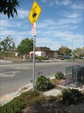 Image for Geese Crossing - Campbell, CA