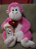 Image for Monkeys4ever