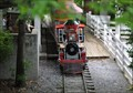 Image for Memphis Zoo Train