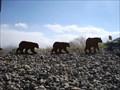 Image for The Three Bears - Draper, Utah