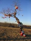 Image for The Homeless Christmas Tree