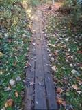 Image for Wahlfield Park Footbridge 12 - Comstock Park, Michigan
