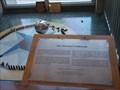 Image for McKinley Museum Foucault Pendulum - Canton, Ohio